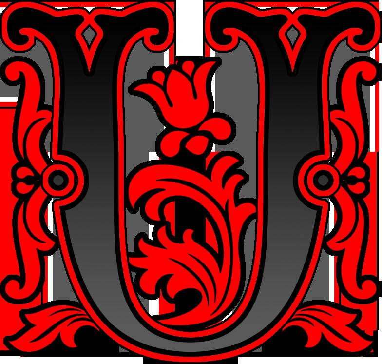 BNR-U
