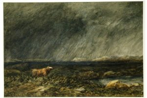 David Cox - A Bull in a Storm on a Moor