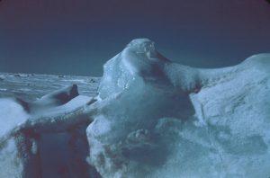 An Arctic Image