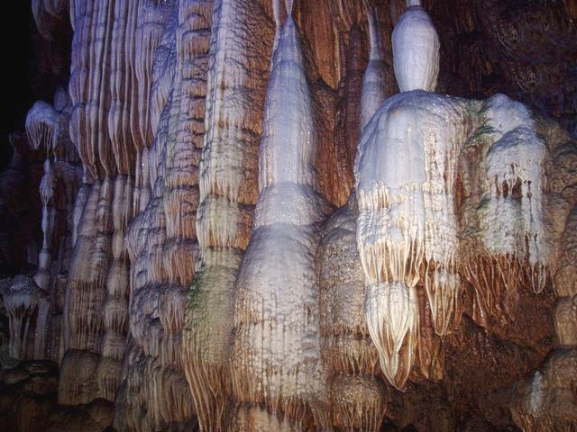 Collection of Curiosities: In the Stalagmite