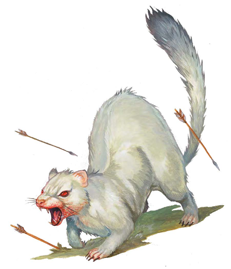 Expanding Codex: Albino Death Weasel